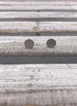 Stainless Steel Silver Circle Earrings