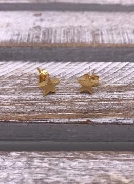 Stainless Steel Gold Star Stud Earring