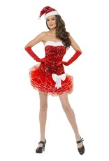 WB Ladies Santa Outfit