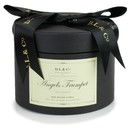 CH SCALLOPED CANDLE | ANGEL'S TRUMPET