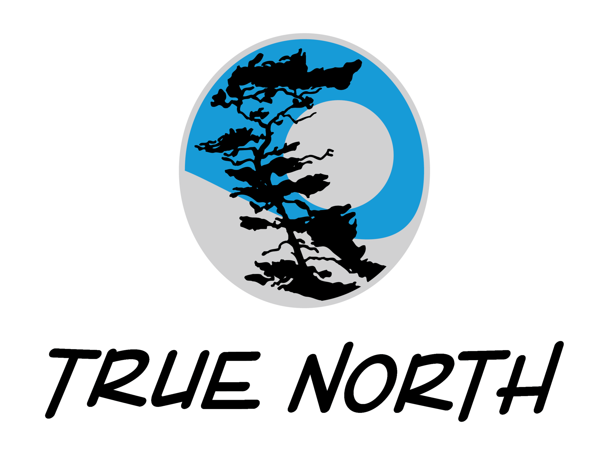 True North Cycles Logo