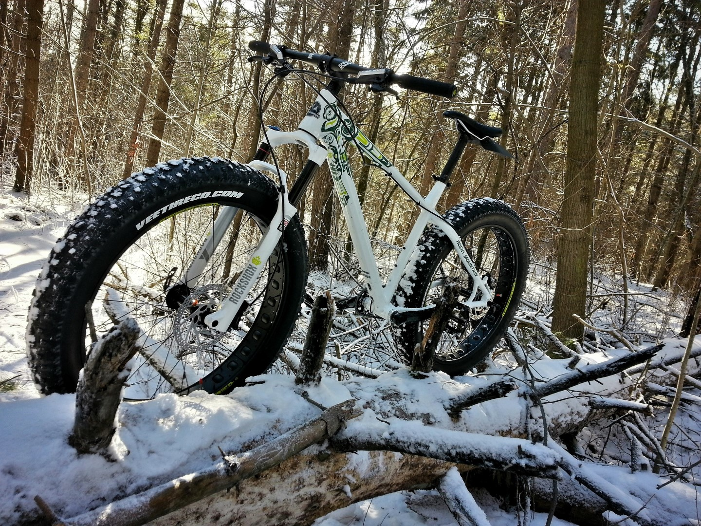 Off-season Trail Obstacles