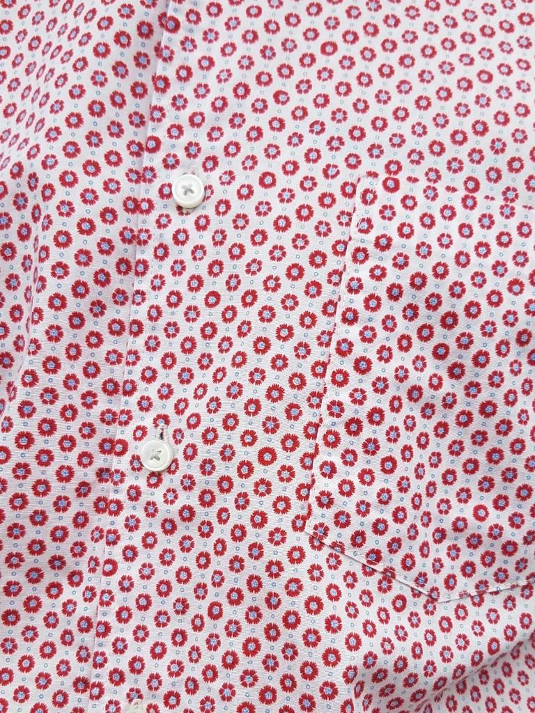 Kato Short Sleeve Button Down Shirt- More Colors