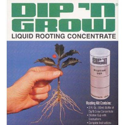 Dip 'N Grow Dip'N Grow