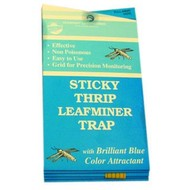 Seabright Laboratories Stick Thrip Leafminer Trap 5 Pack