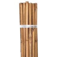 Growers Edge Grower's Edge Natural Bamboo 8 foot