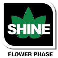 Veg+Bloom Shine