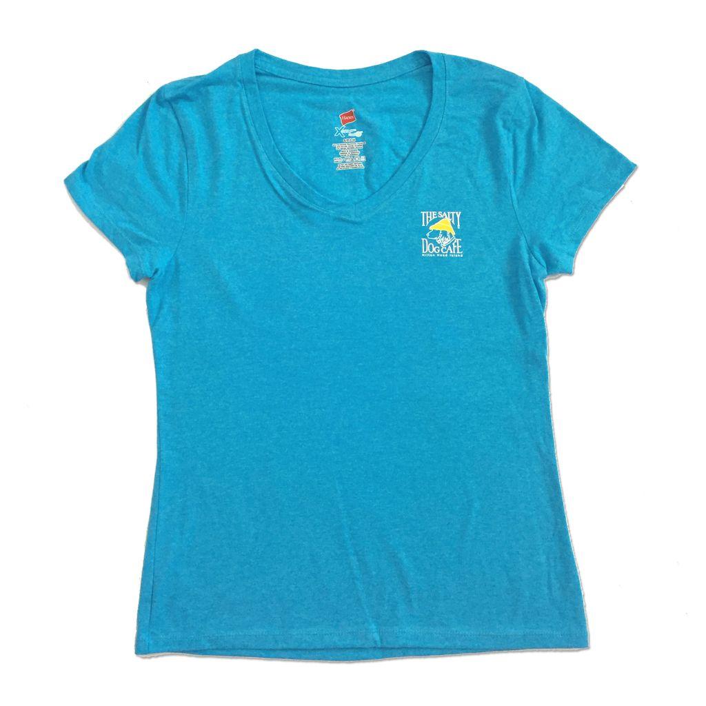 Hanes Women's Triblend V-Neck in Turquoise