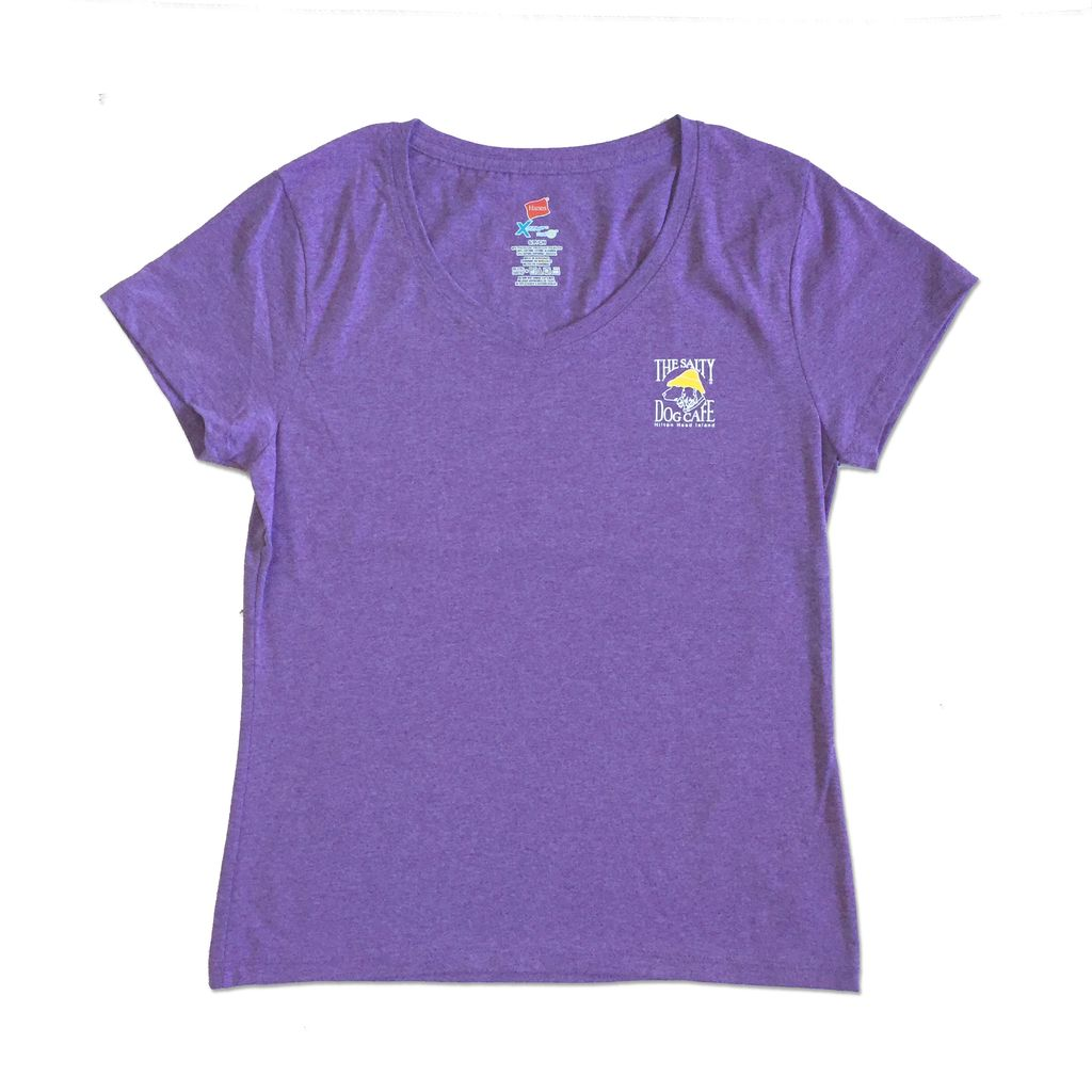 Hanes Women's Triblend V-Neck in Grape