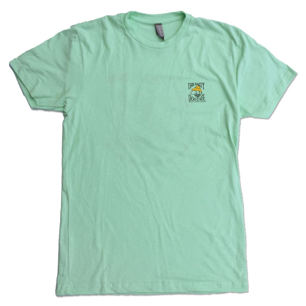"NextLevel ""Be Cool"" Turtle Tee in Mint"