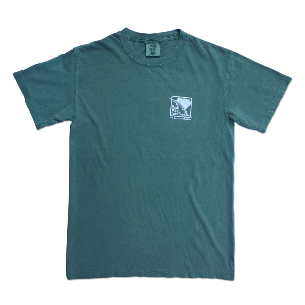 Comfort Colors Blue Water Comfort Colors Tee in Light Green