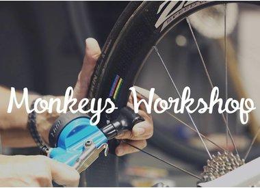 Workshop/Servicing
