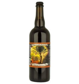 Jolly Pumpkin Jolly Pumpkin Maracaibo Especial Belgian Strong Ale