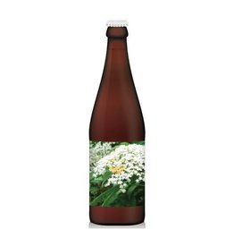 Cloudwater Cloudwater Spirit Animal Elderflower Sour Ale