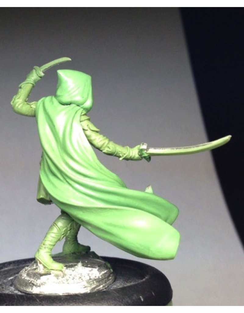 Dark Sword Miniatures ViF Male Elven Warrior/Ranger - Dual Wield