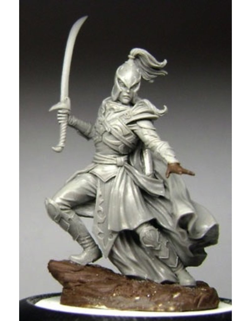 Dark Sword Miniatures VIF Male High Elf Warrior