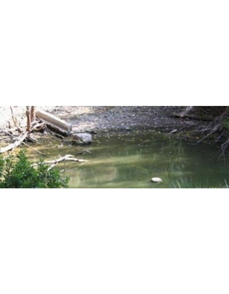 Vallejo VAL26230 Water Effects Still Water