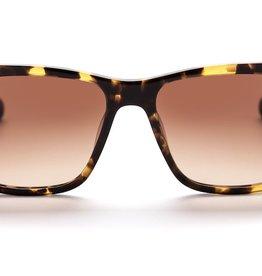 AM eyewear AM | BONDI TONY | SEVENTIES GOLD