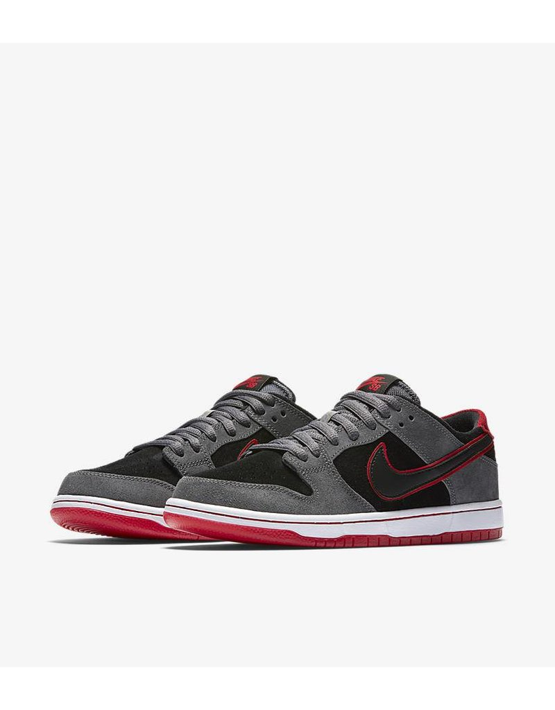 NIKE SB ZOOM DUNK LOW PRO IW LAST PAIR SIZE 9!!!!
