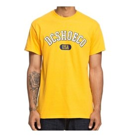 DC DC SKATE ARCH T-SHIRT YELLOW