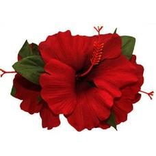 Red Hibiscus Trio Clip