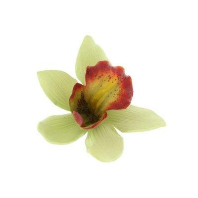 Green Hawaiian Orchid Clip