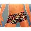 RaveWare Foil Rainbow Zebra Men's Trunks