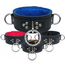 "Kookie 2"" Collar w/ Fleece & D-Rings"