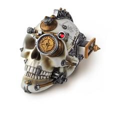 Alchemy England 1977 Erasmus Darwin's Steam-Cerebrum Skull