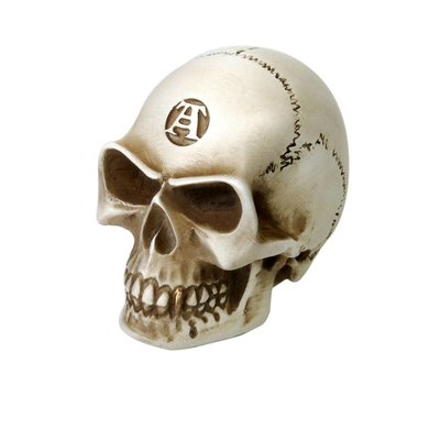 Alchemy England 1977 Bone Colored Skull Gear Knob