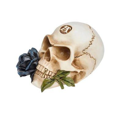 Alchemy England 1977 Black Rose Alchemist Skull