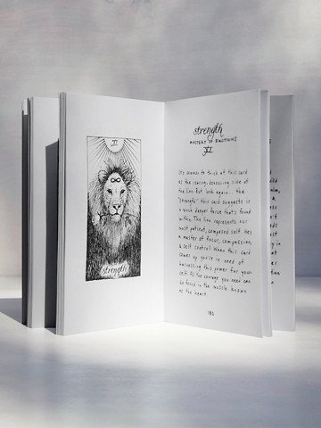 THE WILD UNKNOWN WILD UNKNOWN TAROT GUIDE BOOK