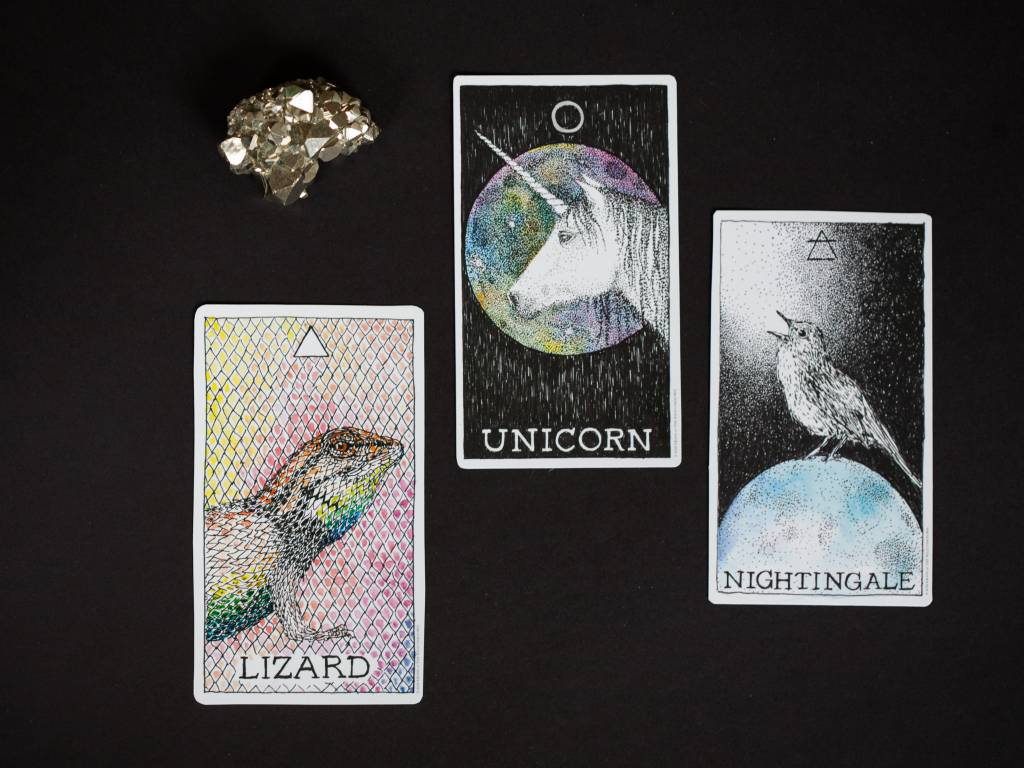 THE WILD UNKNOWN The Wild Unknown Animal Guide Deck