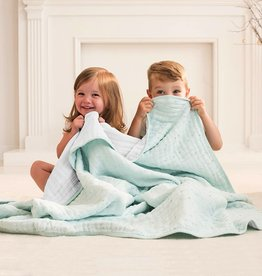 Aden and Anais Metallic Classic Dream Blanket