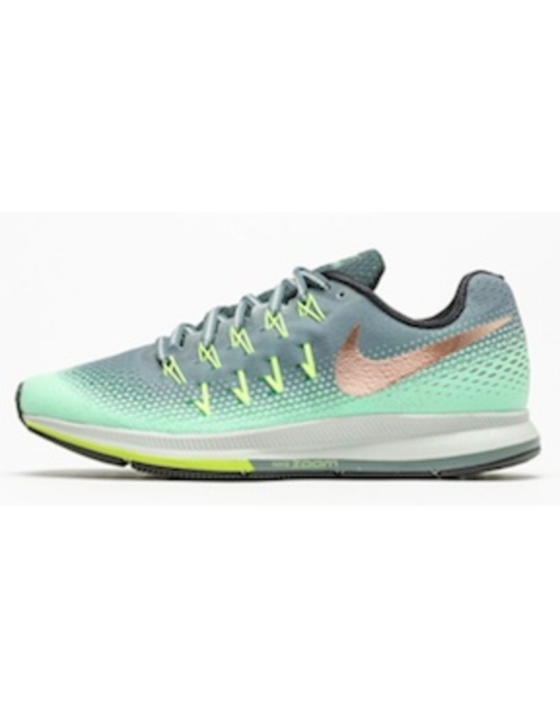 Nike Nike Womens Pegasus 33 Shield