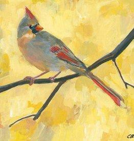 cody blomberg cody blomberg 6x6 lady cardinal