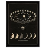 capricorn press capricorn press moon phases art print