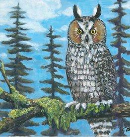 cody blomberg cody blomberg 6x6 long-eared owl