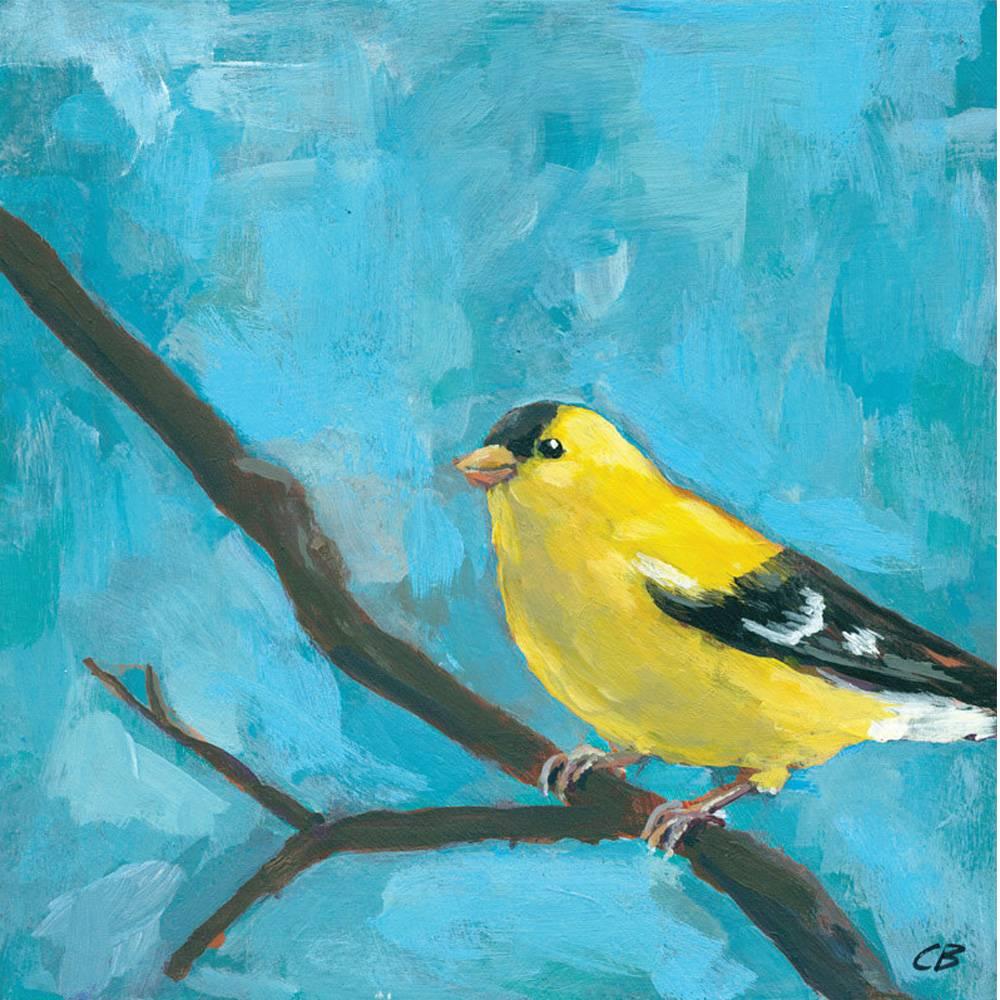 cody blomberg cody blomberg 6x6 c117 goldfinch