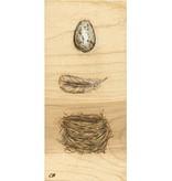 cody blomberg cody blomberg 5x11 print egg.feather.nest