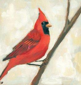 cody blomberg cody blomberg 6 x 6 male northern cardinal