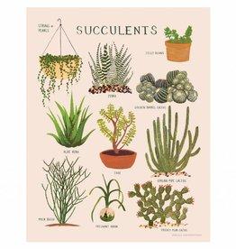 small adventure small adventure succulents art print