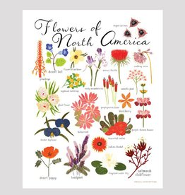 small adventure small adventure flowers of north america art print
