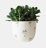 franca franca finca small planter