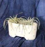 tandem ceramics tandem ceramics shortie planter