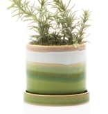 chive chive minute pot & saucer