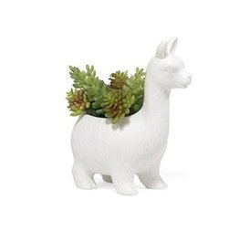 kikkerland lloyd the llama succulent planter