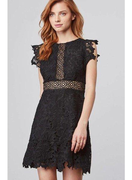 BB Dakota Calvin Dress Black