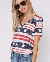 Fantastic Fawn American Flag Navy