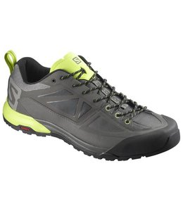 Salomon Men's X ALP SPRY